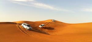 desert_safari