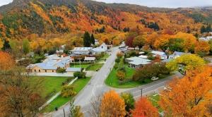 New-Zealand-road-trip35