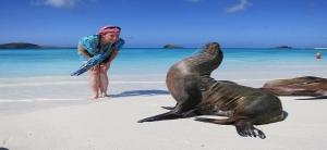 galapagos-islands-espanola-island-gardner-bay-sea-lion