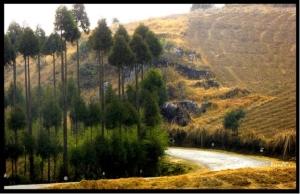hills-of-meghalaya