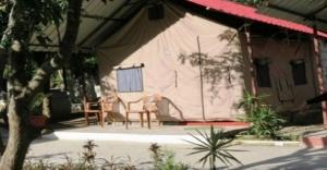 yoga-rishikesh-uttarakhand-north-india-1551-3