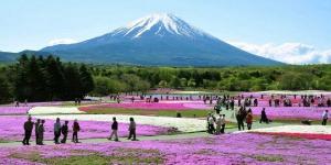 journey-through-japan6