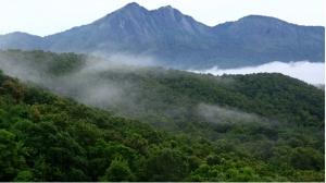 Silent Valley National Park, Kerela