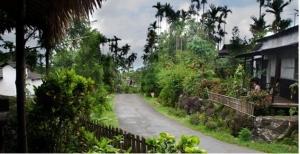 shillong-village