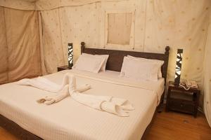 inside-luxury-tent